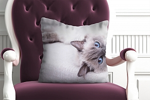 3D Подушка «Голубоглазая кошка» вид 5