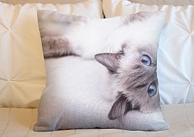 3D Подушка «Голубоглазая кошка» вид 6