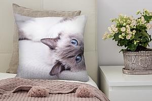 3D Подушка «Голубоглазая кошка» вид 7