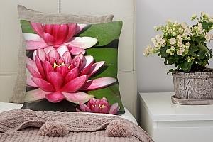 3D Подушка «Яркие розовые лотосы»