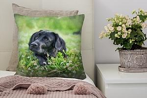 3D Подушка «Собачка в траве»