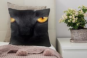 3D Подушка «Кошачий взгляд»