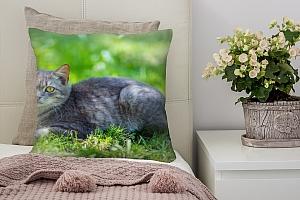 3D Подушка «Котик на зеленом лугу»