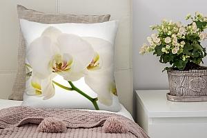 3D Подушка «Нежная белая орхидея»