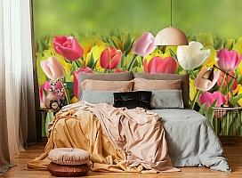 3D Фотообои  «Тюльпаны с каплями росы»  вид 6