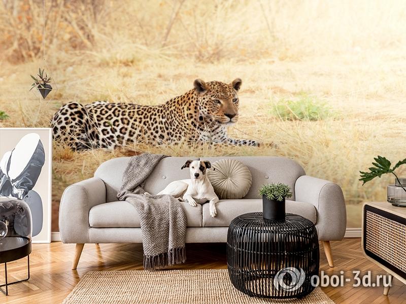 3D Фотообои «Леопард» вид 4