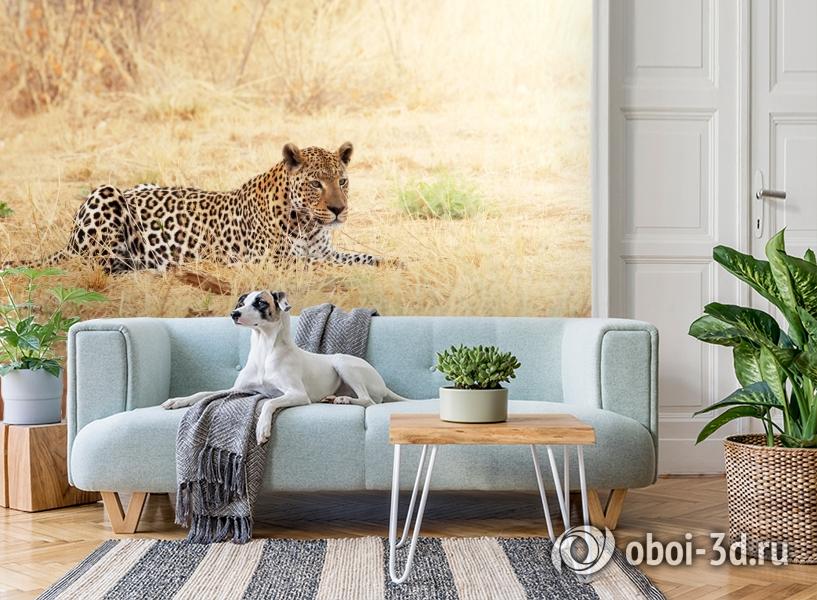 3D Фотообои «Леопард» вид 2