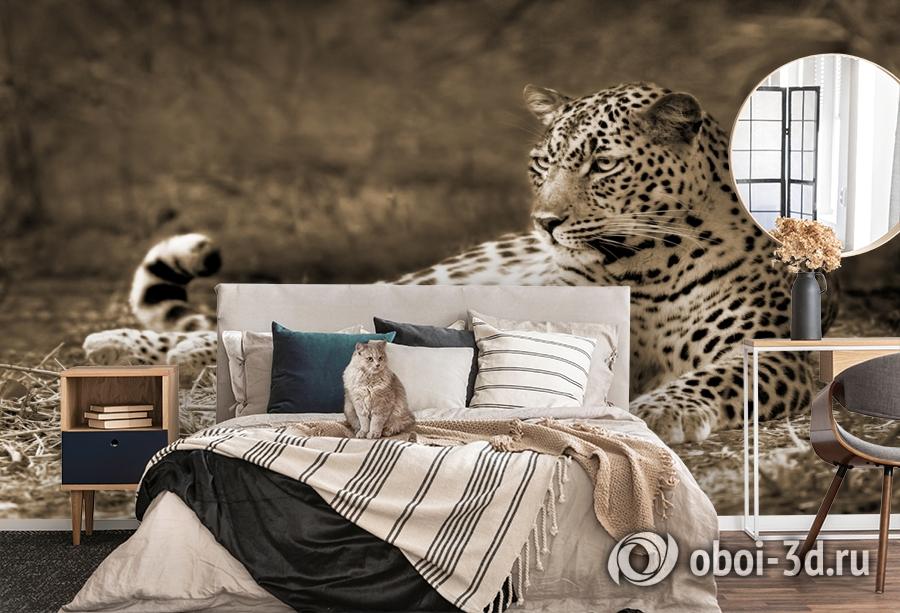 3D Фотообои «Леопард сепия» вид 5