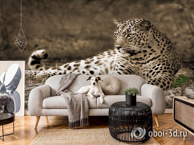 3D Фотообои «Леопард сепия» вид 4