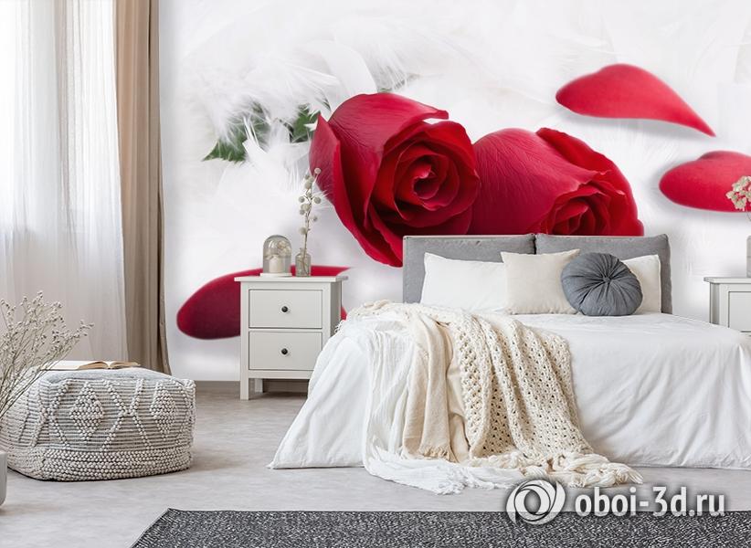 3D Фотообои  «Красные розы в перьях»  вид 6