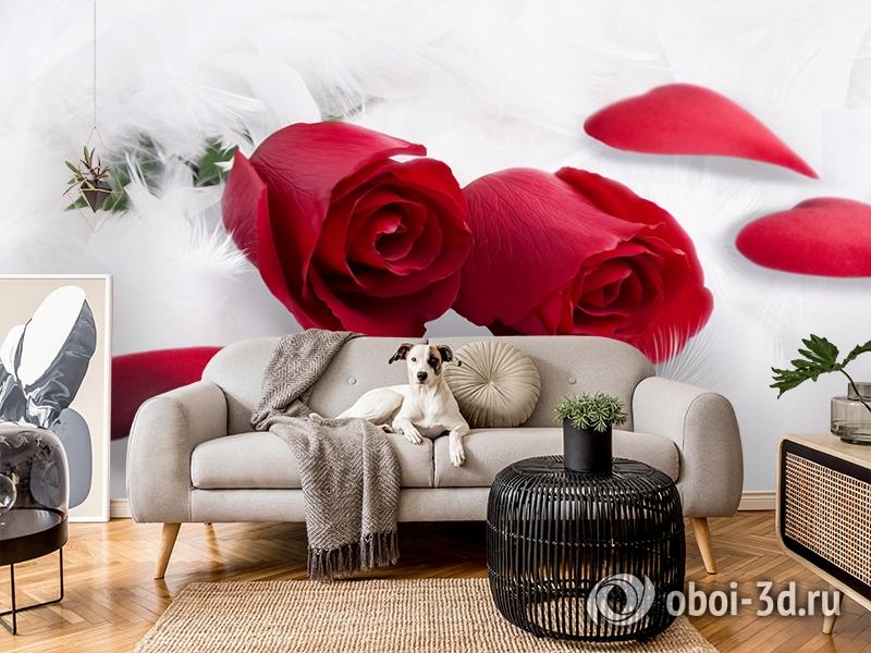 3D Фотообои  «Красные розы в перьях»  вид 5