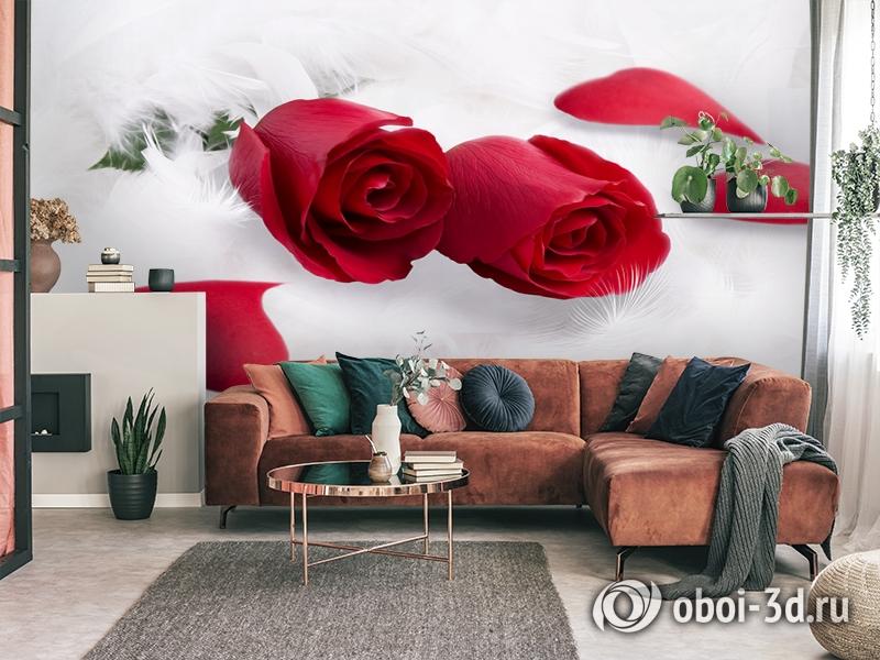 3D Фотообои  «Красные розы в перьях»  вид 4