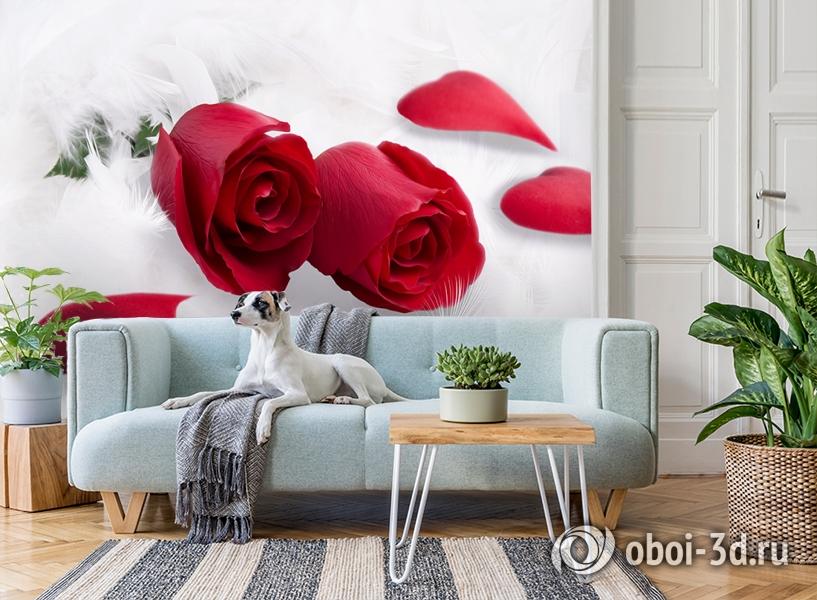 3D Фотообои  «Красные розы в перьях»  вид 2