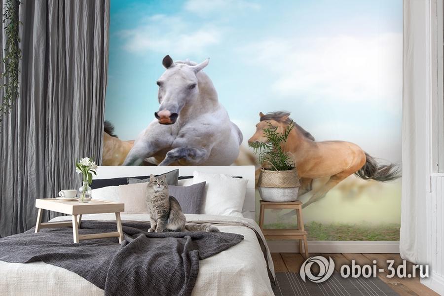 3D Фотообои «Лошади в дикой природе» вид 7