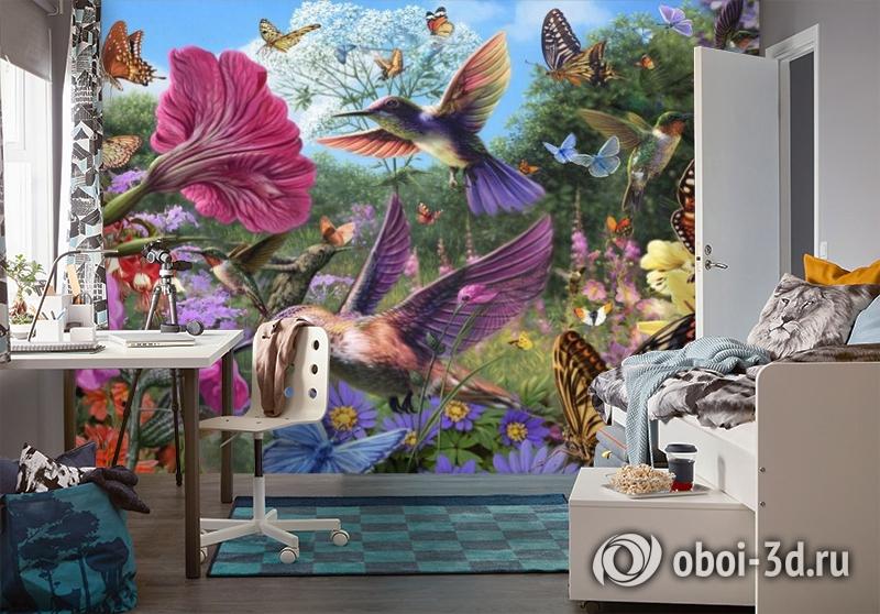3D Фотообои «Колибри» вид 4