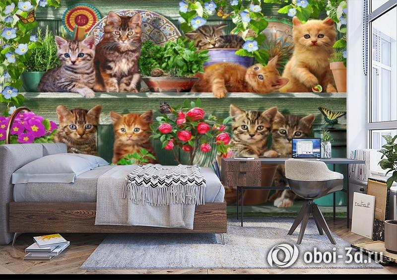 3D Фотообои «Озорные котята» вид 5