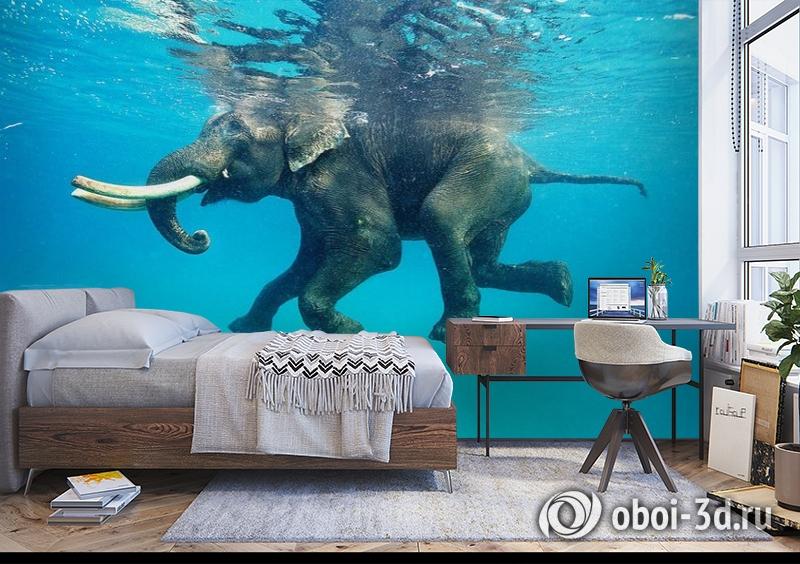 3D Фотообои «Купающийся слон» вид 5