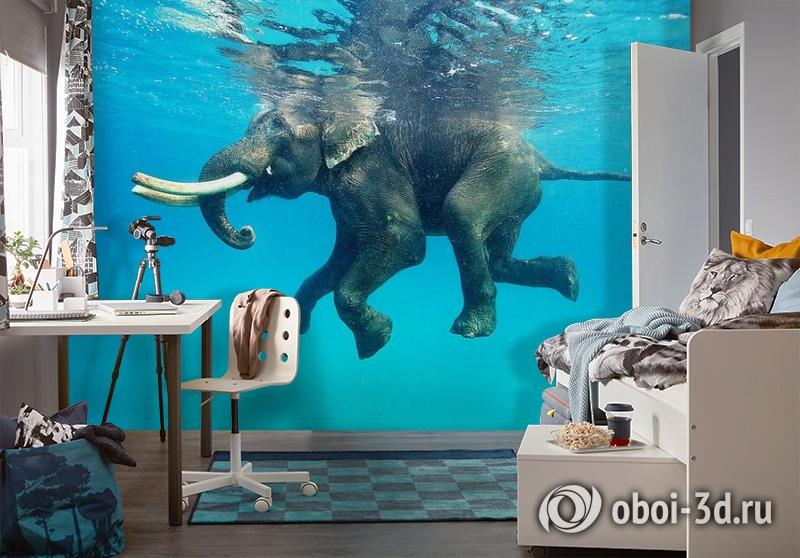 3D Фотообои «Купающийся слон» вид 4