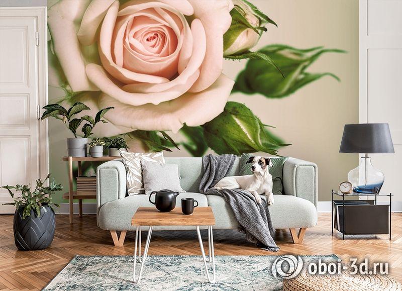 3D Фотообои «Роза» вид 8