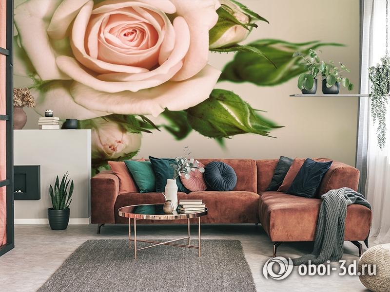 3D Фотообои «Роза» вид 3