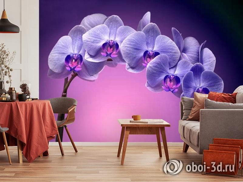 3D Фотообои «Фиолетовая орхидея» вид 5