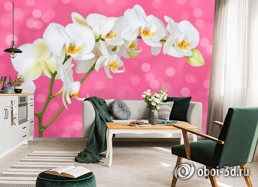 3D Фотообои «Белая орхидея на розовом фоне» вид 7
