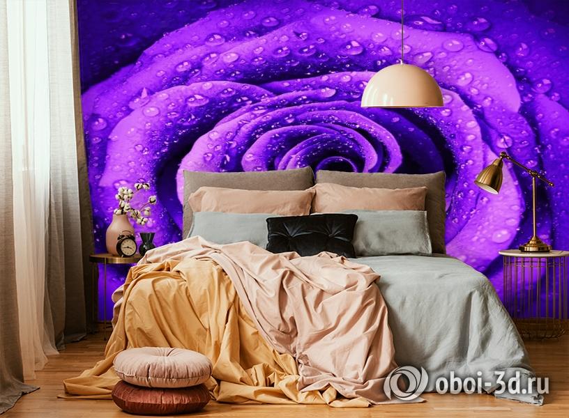 3D Фотообои «Фиолетовая роза с каплями» вид 6
