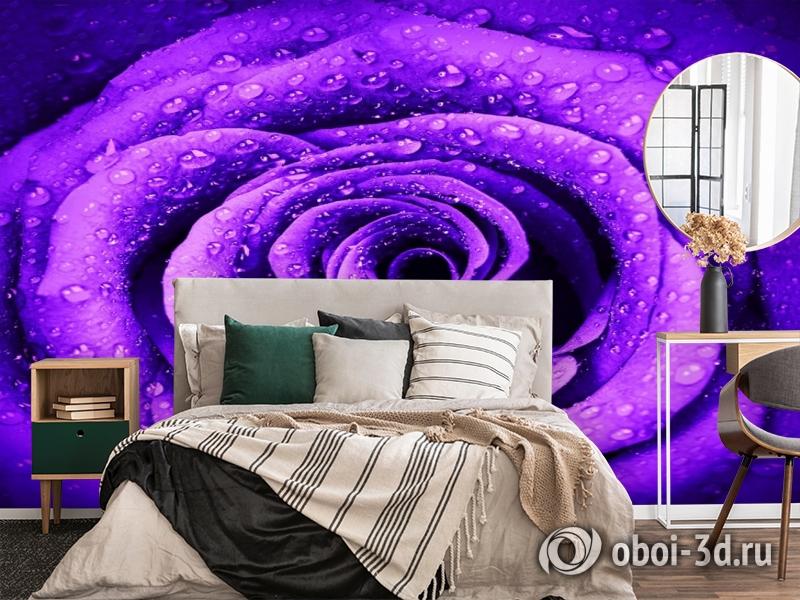 3D Фотообои «Фиолетовая роза с каплями» вид 4