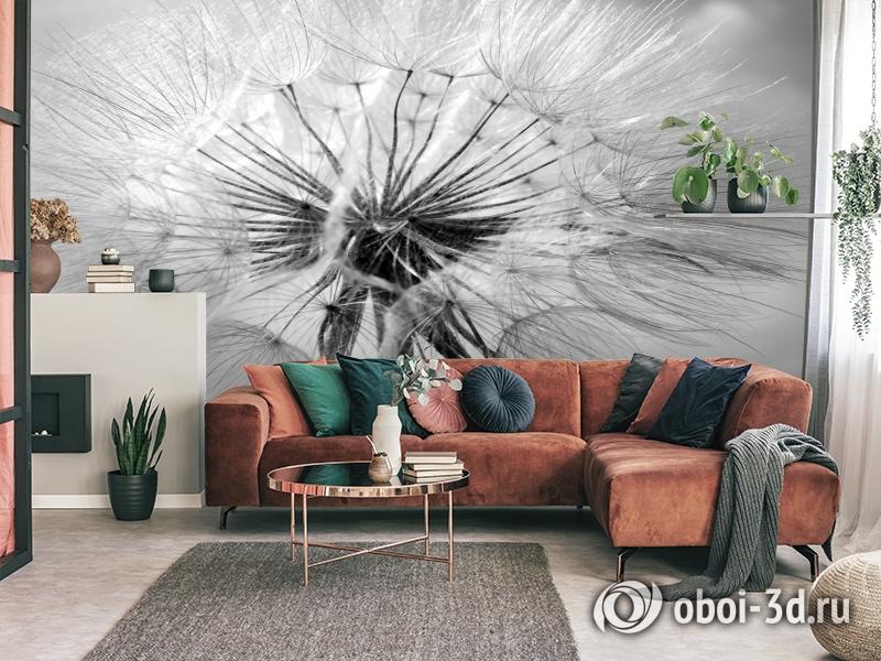 3D Фотообои «Одуванчик» вид 3