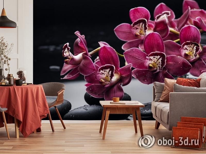 3D Фотообои «Бордовые орхидеи» вид 5