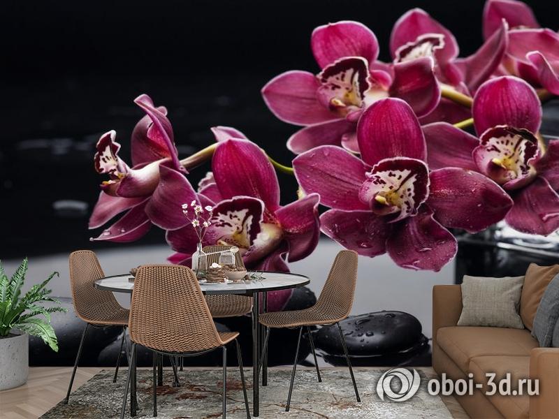 3D Фотообои «Бордовые орхидеи» вид 2