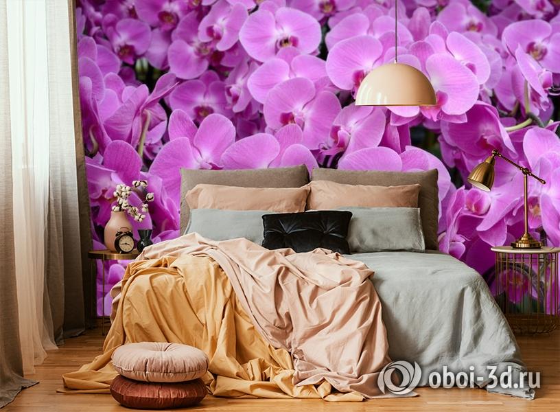 3D Фотообои «Ковер из орхидей» вид 6