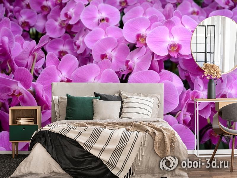 3D Фотообои «Ковер из орхидей» вид 4