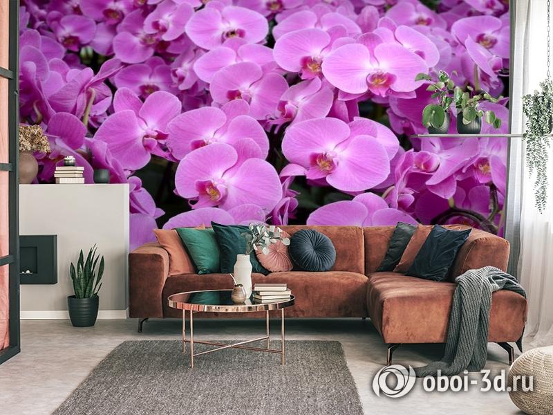 3D Фотообои «Ковер из орхидей» вид 3