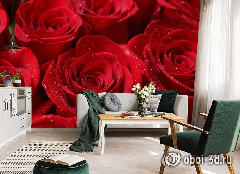 3D Фотообои «Бархатные розы в каплях утренней росы» вид 7