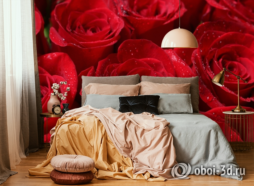 3D Фотообои «Бархатные розы в каплях утренней росы» вид 6