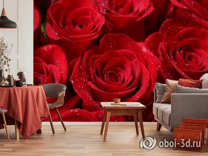 3D Фотообои «Бархатные розы в каплях утренней росы» вид 5