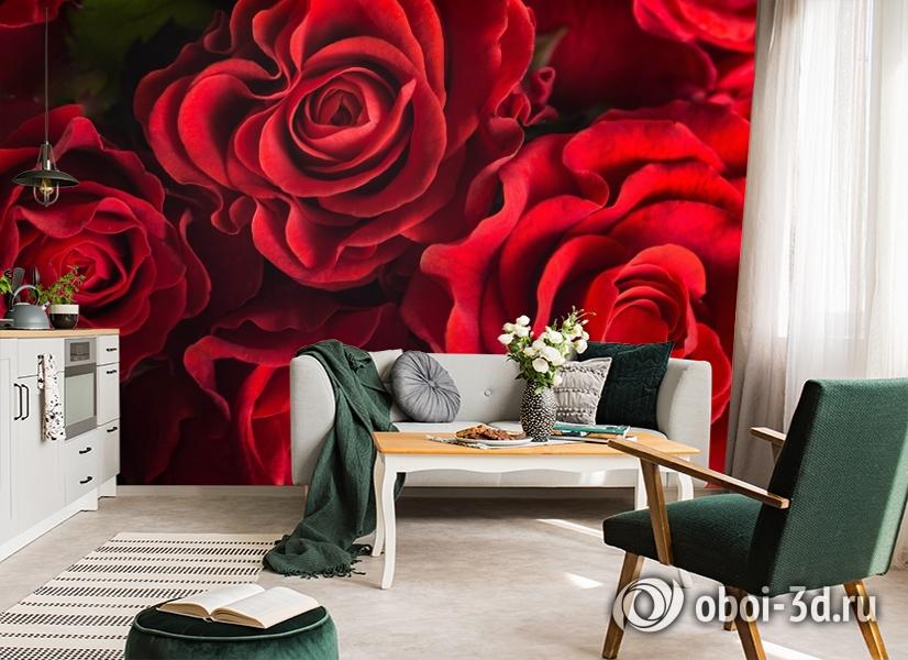3D Фотообои «Бордовые розы» вид 7
