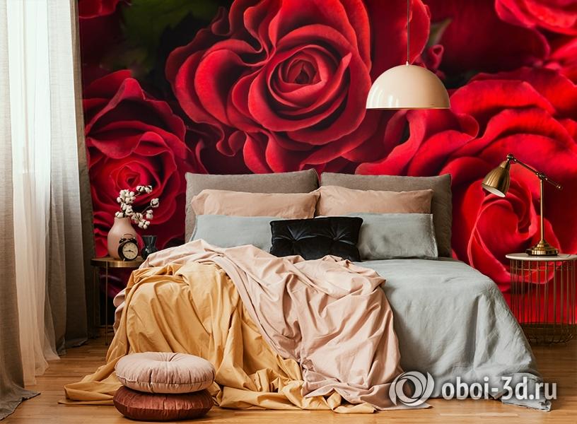 3D Фотообои «Бордовые розы» вид 6