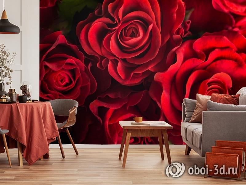 3D Фотообои «Бордовые розы» вид 5