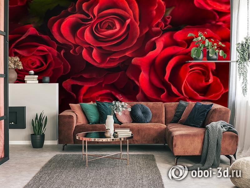 3D Фотообои «Бордовые розы» вид 3
