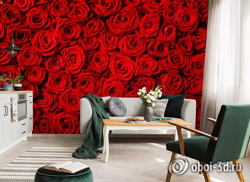 3D Фотообои «Миллион алых роз» вид 7