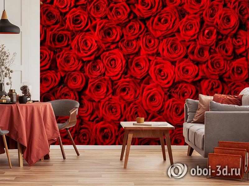 3D Фотообои «Миллион алых роз» вид 5