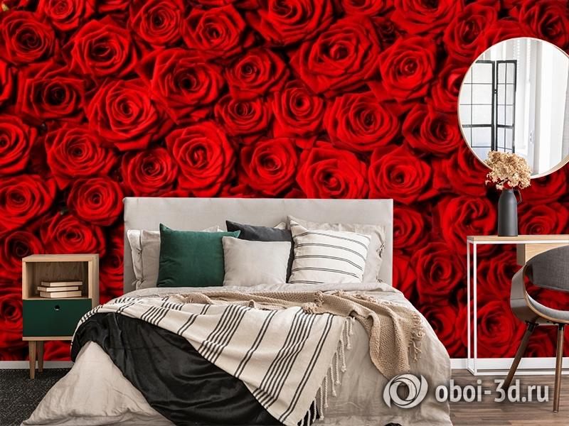 3D Фотообои «Миллион алых роз» вид 4