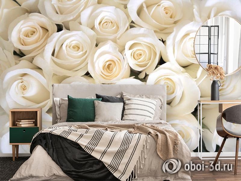3D Фотообои «Нежные белые розы» вид 4