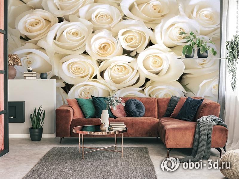 3D Фотообои «Нежные белые розы» вид 3