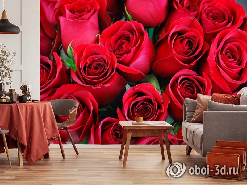 3D Фотообои «Нежные бордовые розы» вид 5