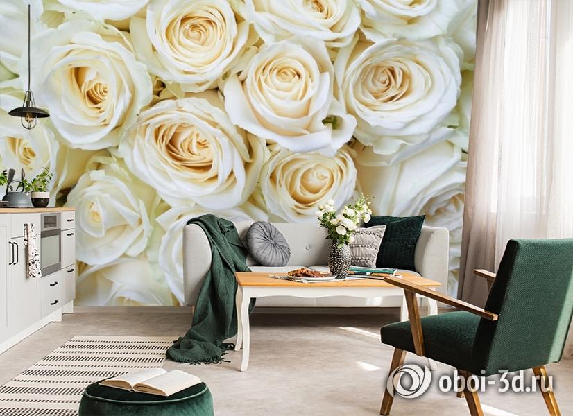 3D Фотообои «Нежные кремовые розы» вид 7