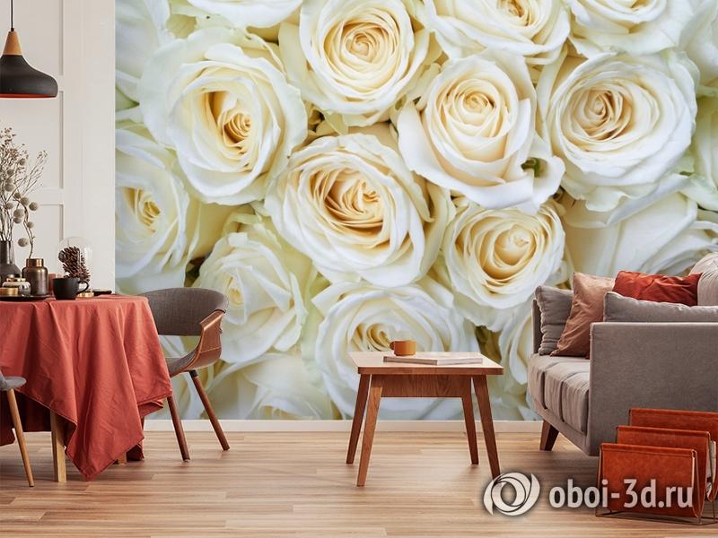 3D Фотообои «Нежные кремовые розы» вид 5