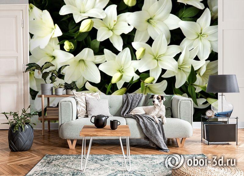 3D Фотообои «Белые лилии с бутонами» вид 8